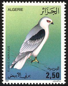 Pájaros en sellos: Algiers Algerije Algérie