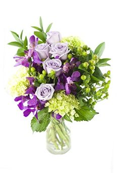 Birthday Circus Rose and Hydrangea Bouquet -With Vase KaBloom http://www.amazon.com/dp/B00MF9RXN6/ref=cm_sw_r_pi_dp_fXRhub0FB1685