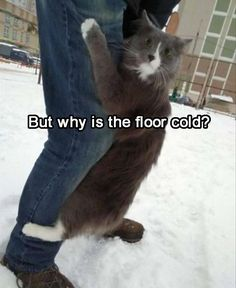 But Why Is The Floor Cold