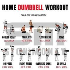 Gain Muscle Mass Using Only Dumbbells With 10 Demonstrated Exercises - GymGuider.com