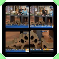 Lazy Cat products featured on Canada AM - June 3, 2013