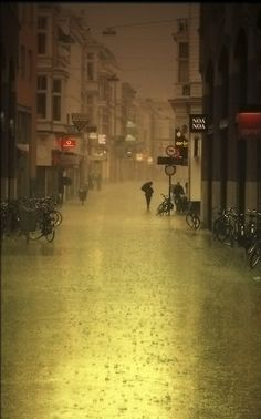 rain (by Frans Peter Verheyen on flickr)