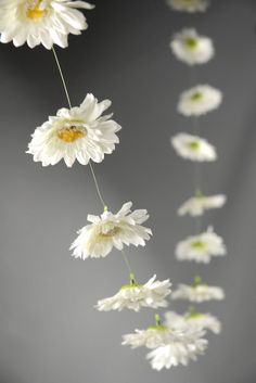 Daisy garlands. Love these but with the yellow flowers.