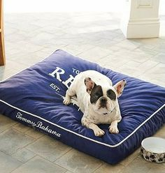 Give your dog a taste of the laid-back island lifestyle with this cozy pet bed.
