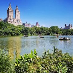 A #relaxed Saturday with our friends in #centralparknyc  Not a cloud in the sky! . . . . . . . . Thank you all who love #NYC ------------------------------------------------ #NewYorkCity #ig_all_americas #loves_nyc #nycprime_ladies #nbc4ny #travel_drops #thestreetpr0ject #compositionkillerz #nyc_explorers #nypix #eclectic_shotz #travelnyc #nycprimeshot #fox5ny #nbcnewyork #what_i_saw_in_nyc #newyork_ig #nyloveyou #seeyourcity #nyobsession #ihersofnyc #newyorker #ig_nycity #nyc_community…