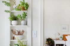 "The plants on the built-in shelf are from local nursery Flora Grubb. Many plants have outgrown their pots, which makes Kirstie happy that she's kept them alive for so long. ""Fill your space with things you love,"" she says."