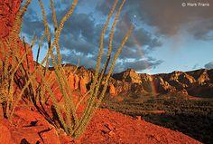Light accentuates red-rock hues in the Broken Arrow Trail near Sedona.   Mark Frank