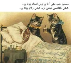 the picture is too much hilarious haha Urdu Funny Poetry, Urdu Funny Quotes, Funny Attitude Quotes, Best Urdu Poetry Images, Cute Funny Quotes, Jokes Quotes, Fun Quotes, Poetry Quotes, Life Quotes