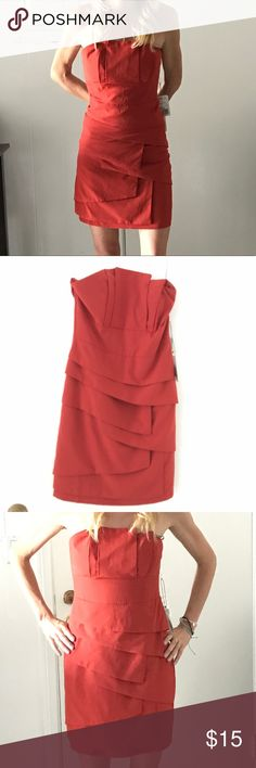 Strapless geometric paneled dress NWT burnt orange strapless dress. Panels across front for geometric pattern. Zipper on back closure. Perfect condition. New with tags. Forever 21 Dresses