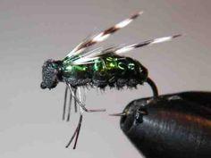 FlyTyingForum.com - Horse Fly