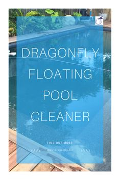 Do you want a swimming pool cleaner that removes the leaves BEFORE they sink? A floating pool skimmer is the best pool cleaner for pools with lots of leaves. #swimmingpool #pool #piscina #swimmingpooltime #poollife Swimming Pool Cleaners, Swimming Pool Water, Floating Pool Skimmer, Types Of Mold, Pool Supplies, Pool Cleaning, Cool Pools, Inline, Swimmers
