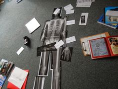 Campfires and Cleats: Skeletal System Unit Study ~ A Round up of Hands On, Audio Visual, Book, Online, Craft, Cookies and Costumes: Just in Time for Halloween!