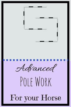 Advanced Polework - TheRider'sReins