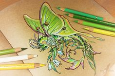Lunar moth dragon by AlviaAlcedo.deviantart.com on @DeviantArt