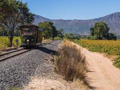 A review of the Franschhoek wine tram, a hop-on-hop-off tram/bus that allows you to visit 6 wineries in South Africa's Franschhoek valley without driving.