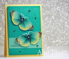 Colouring Butterflies with Blendabilities - Alisa Tilsner
