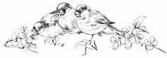 Old Design Shop ~ free digital image: birds perched on flowering branch vintage clipart
