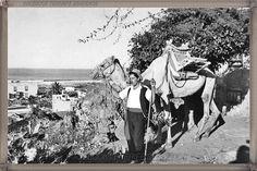 Puerto de La Cruz año 1968 #fotoscanariasantigua #tenerifesenderos #fotosdelpasado #canariasantigua #canaryislands #islascanarias #blancoynegro #recuerdosdelpasado #fotosdelrecuerdo