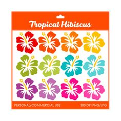 Tropical Hibiscus Clipart - Digital Clip Art Graphics for Personal or Commercial Use. $2.00, via Etsy.