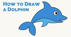 Easy Cartoon Drawings, Cartoon Girl Drawing, Disney Drawings, Animal Drawings, Easy Drawings, Learn To Draw Anime, How To Draw Anime Eyes, Dolphins For Kids, Dolphin Drawing