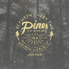 (via Between every two pines is a doorway to a new world - John Muir   type + design   Pinterest   John Muir, Pine and World)