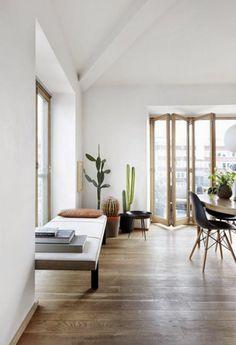 Zimmerpflanzen pflegeleicht Kakteen schlichte Wohnzimmer-Einrichtung