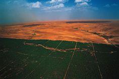 Soluciones para una mejor Calidad de Vida: La Gran Muralla Verde Africana
