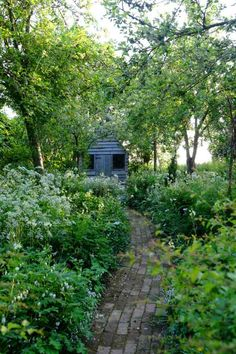 monty don, big dreams, small spaces - Google Search   Gardening ...