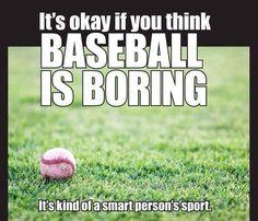 Not everyone can appreciate the intricacies of a beautiful sport like baseball.