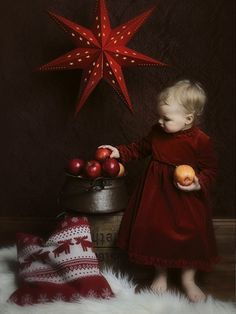 Outstanding examples of Christmas photography