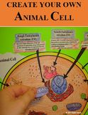 Animal Cell Organelle Cut and Paste by Mrs G Classroom Science Classroom, Teaching Science, Science Activities, Classroom Ideas, Science Curriculum, Classroom Projects, Science Fun, Science Ideas, Science Education