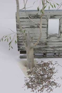 Queensland Miners Cottage, Scale 1/24 | Modelers Social Club Forum