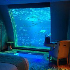 Sleeping in an Aquarium at the Equarius Hotel Singapore
