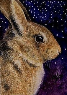 Easter Bunny Rabbit/ Stars Art by Melody Lea Lamb by MelodyLeaLamb Illustrations, Illustration Art, Animals And Pets, Cute Animals, Lapin Art, Rabbit Pictures, Rabbit Art, Bunny Art, Star Art