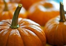 These orange gourds are good for more than making spooky faces — they're also packed with disease-fighting vitamins.