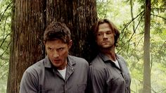 """out-in-the-open: """"""""Sam and Dean hiding behind a tree, pressed all close together. For Kylie caz she got her priorities straight :P """" """""""