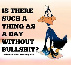 No, I don't think there is. Funny Adult Memes, Funny Cartoons, Funny Jokes, Hilarious, Looney Tunes Funny, Daffy Duck Quotes, Bunny Quotes, Just For Laughs, Just For You