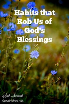 """Habits that Rob Us of God's Blessings""  (8.21) Are there habits that can rob us of God's blessings? If so, what are they and what do they look like when they show up in our lives?  Also, is it possible for evil and suffering to lead to good? And could we be in danger of following men and not God?"