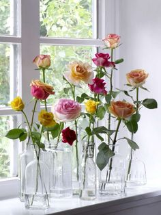 Stem roses in vintage glass bottles