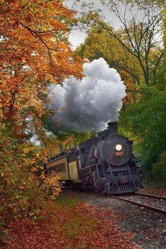Train Tracks, Train Rides, Motor A Vapor, Old Steam Train, Train Art, Old Trains, Train Pictures, Autumn Scenery, Train Engines