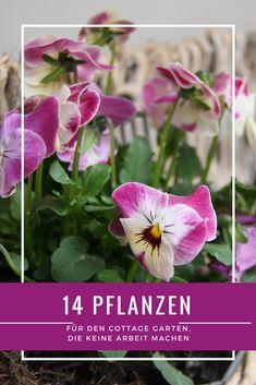 Hochzeitsdekoration Möbel & Wohnen MüHsam 100x Rosen Blumen Köpfe 2 Cm Aus Schaum Handgemacht Dekoration Wohnzimmer