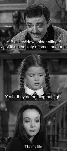 addamsfamily. wednesday morticia  and gomez