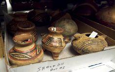 South Florida Museum exhibit