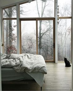 ideas tree house bedroom apartment therapy for 2019 Winter Bedroom, Home Bedroom, Bedroom Decor, Bedrooms, Bedroom Apartment, Bedroom Ideas, Apartment Layout, Bedroom Chair, Bedroom Loft