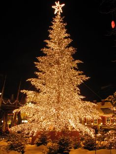 Christmas tree in Tivoli Gardens, Copenhagen, Denmark! Christmas Scenes, Noel Christmas, Outdoor Christmas, Winter Christmas, Christmas Lights, Vintage Christmas, Christmas Decorations, Xmas, Europe Christmas
