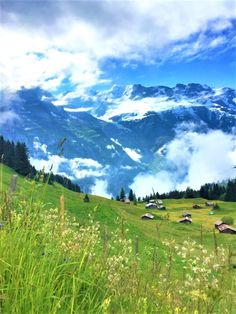 Our epic hiking adventure in the stunning Berner Oberland and Lauterbrunnen Valley, Switzerland - Land Of Travels Hawaii Things To Do, European Vacation, Jungfraujoch, Backpacking Europe, Natural Scenery, Travel Aesthetic, Day Trips, Trip Planning, Travel Inspiration