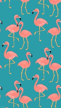 23 Ideas Wallpaper Ipad Illustration Print Patterns For 2019 Flamingo Wallpaper, Hipster Wallpaper, Trendy Wallpaper, Tumblr Wallpaper, Print Wallpaper, Wallpaper Iphone Cute, Cellphone Wallpaper, Aesthetic Iphone Wallpaper, Flower Wallpaper