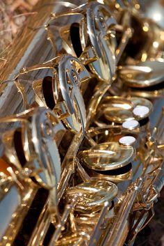 ZsaZsa Bellagio: Elegance. I played alto sax in high school..most sensual instrument