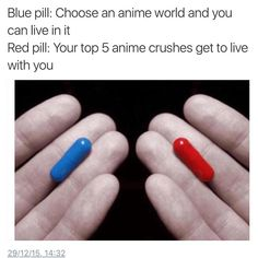 Take them both but If I had to choose I would probably choose the blue one and then try to find my favorite characters and befriend them then hopefully my senpai will notice me ❤️
