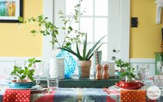decorating with succulents - Google Search